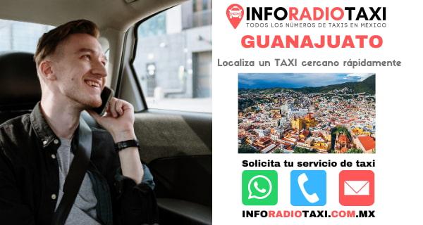 radio taxi Guanajuato