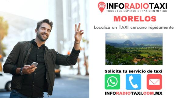 radio taxi Morelos