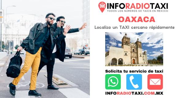radio taxi Oaxaca