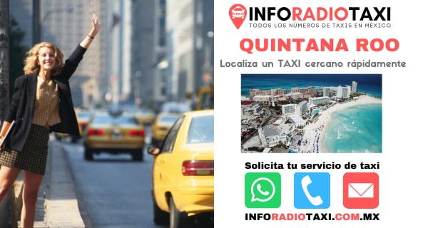 radio taxi Quintana Roo