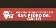 radio taxi San Pedro del Gallo