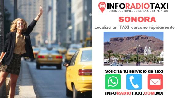 radio taxi Sonora