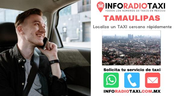 radio taxi Tamaulipas