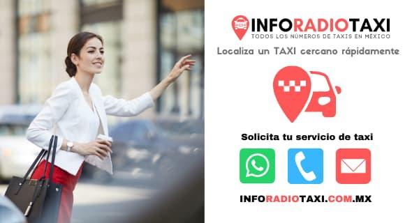 radio taxi municipios Zacatecas