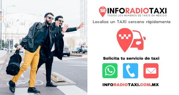 radio taxi municipios de Oaxaca