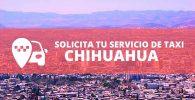 telefono radio taxi Chihuahua