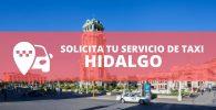 telefono radio taxi Hidalgo
