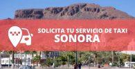 telefono radio taxi Sonora